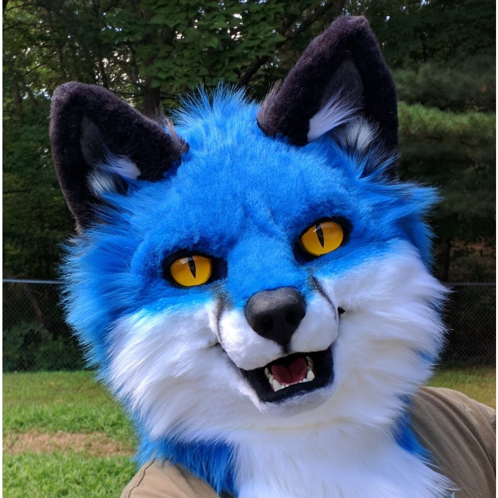 avatar for Anti BlueFox