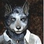 avatar for Blue Heeler SunFire