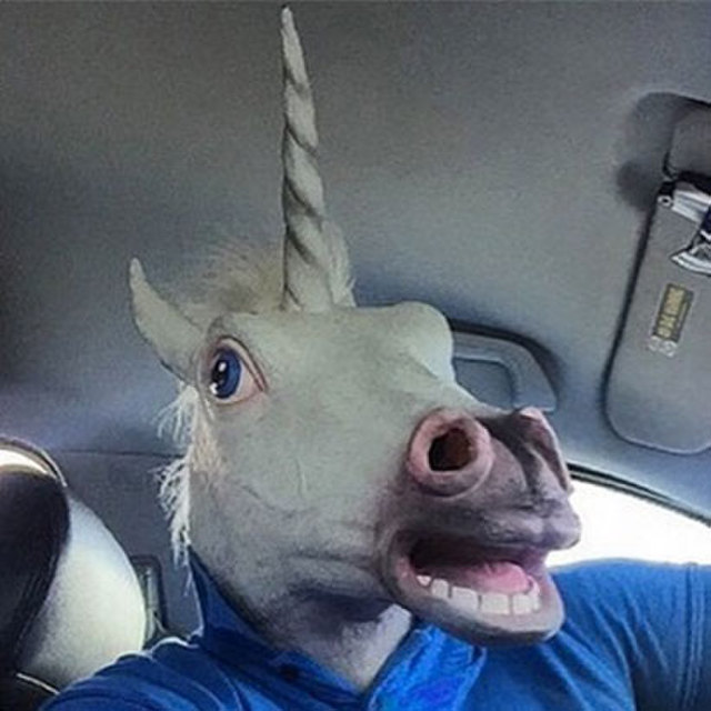 avatar for Unicornelio Primero