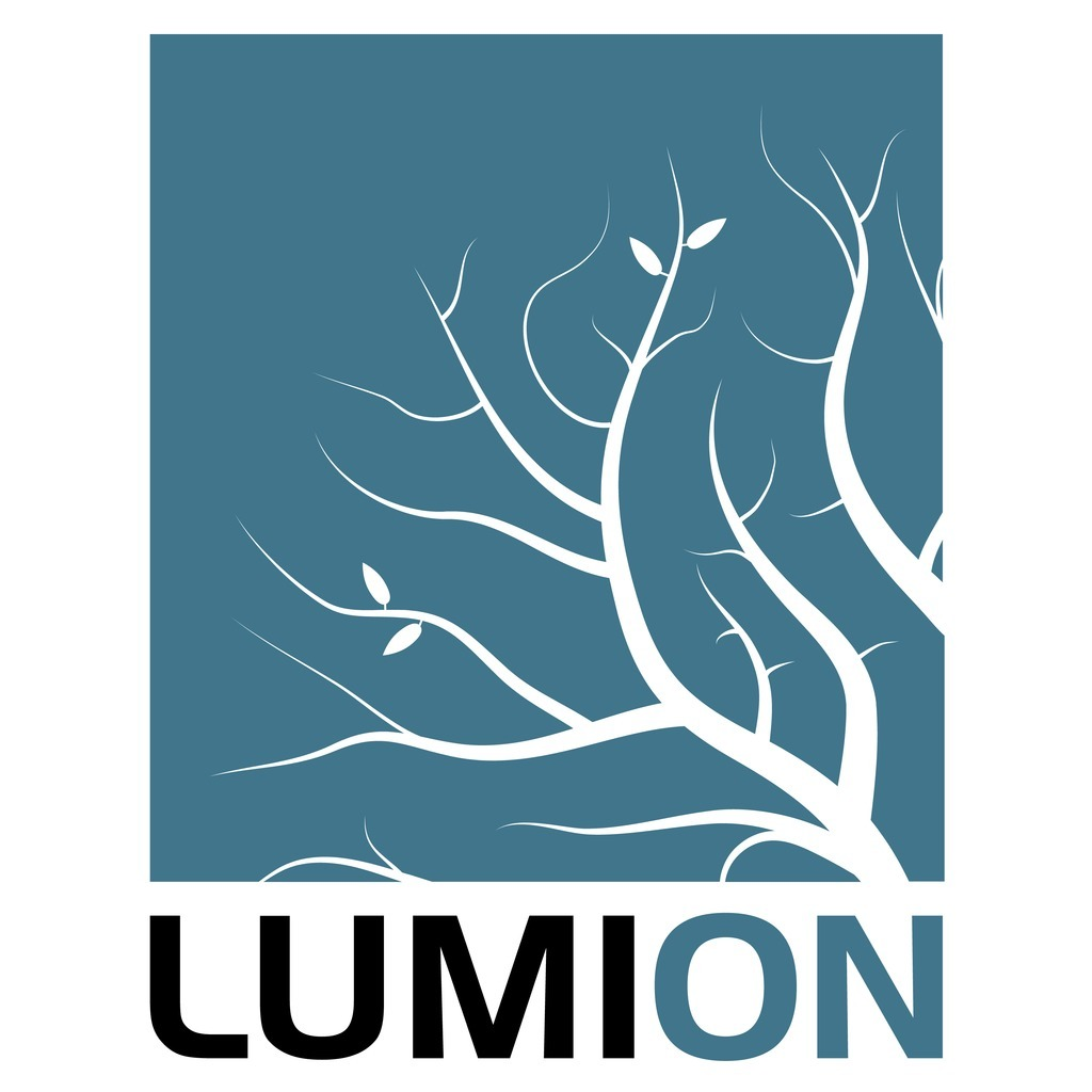 avatar for Lumion