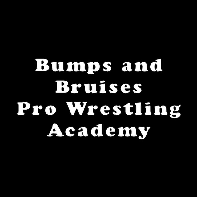 avatar for Bumps and Bruises