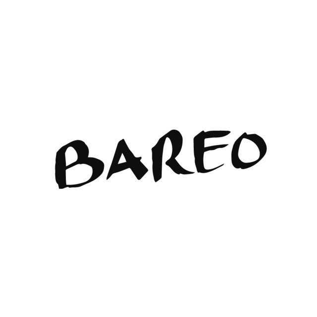 avatar for Bareo