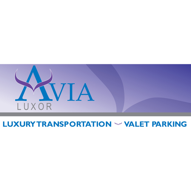 avatar for AVIA Valet