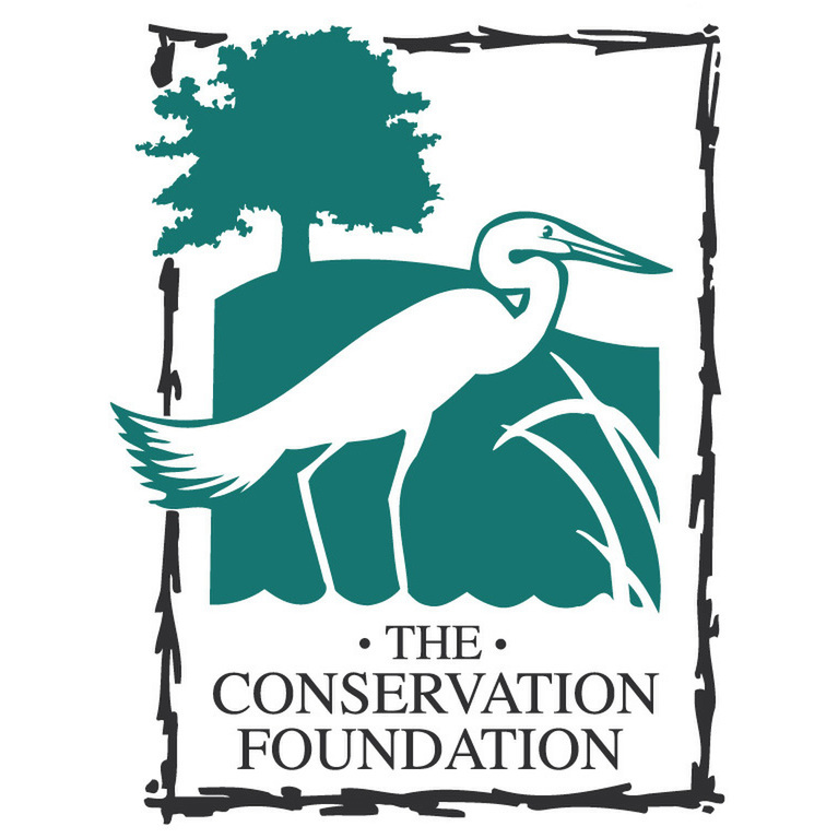avatar for The Conservation Foundation