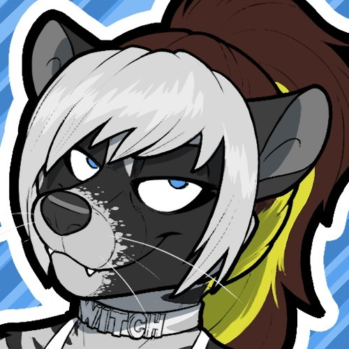 avatar for Cassidy Civet