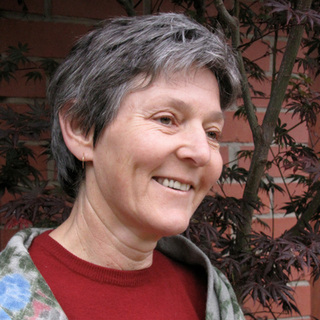 Chair: Professor Lyndall Strazdins