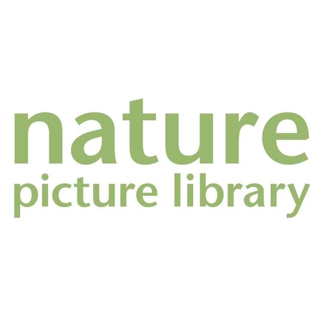 avatar for Nature Picture Library
