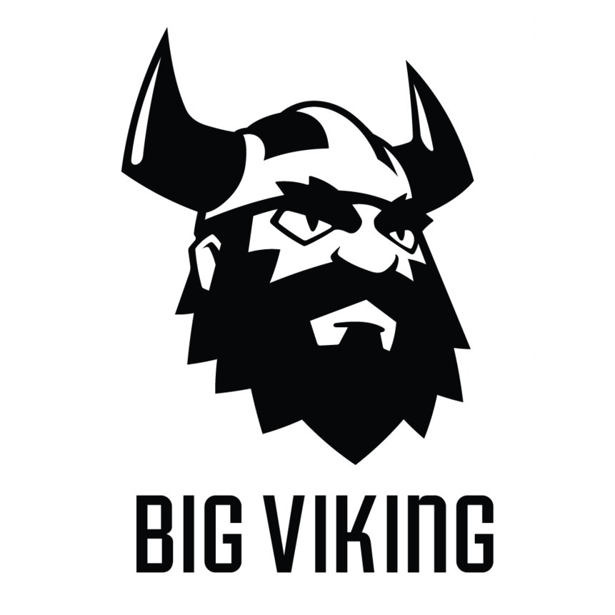 avatar for Big Viking Games