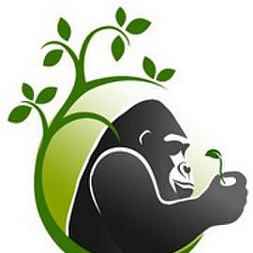 avatar for Silverback Learning
