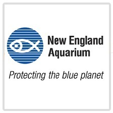 avatar for New England Aquarium