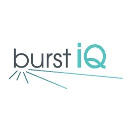 avatar for BurstiQ