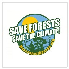 avatar for Mass Forest Rescue