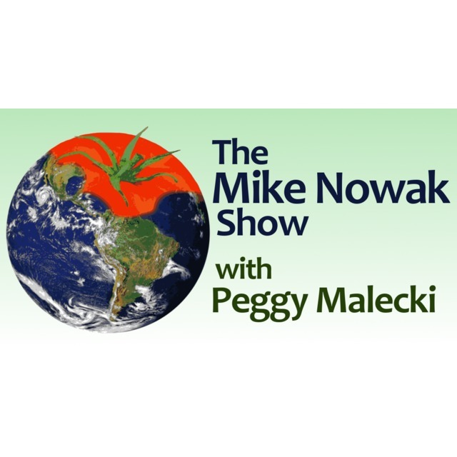 avatar for Mike Nowak
