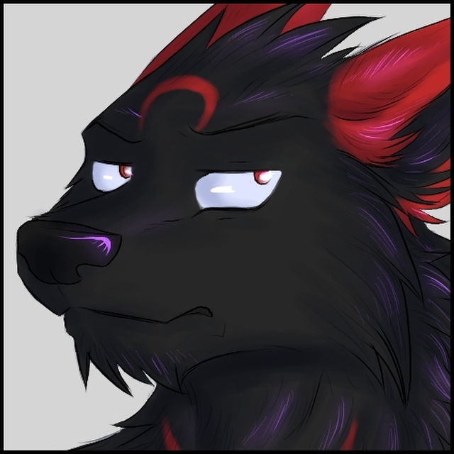 avatar for darkwoif