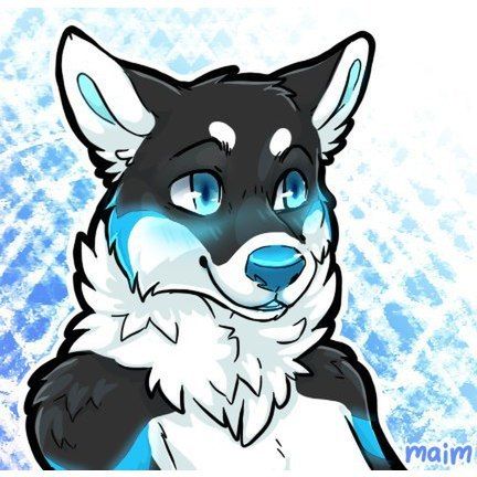 avatar for Reynard Husky