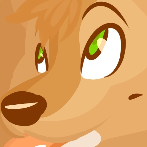 avatar for MattFox