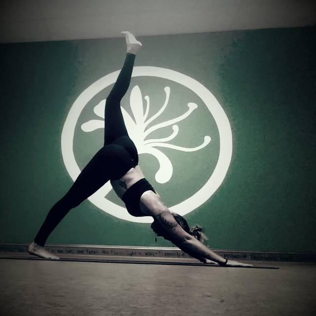Fayetteville Yoga Fest: Directory