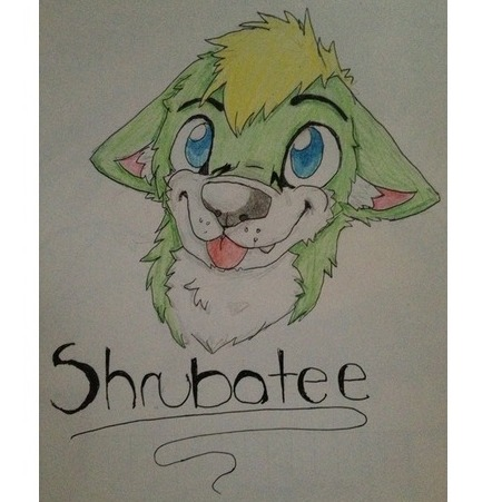 avatar for Shrubatee