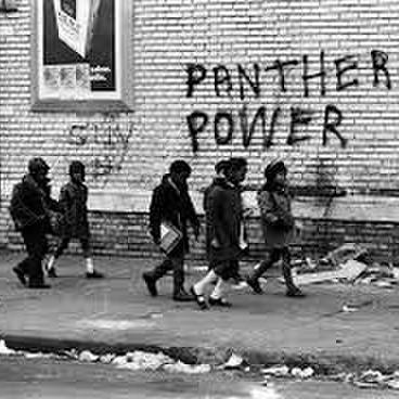 avatar for The Black Panthers: Vanguard of the Revolution