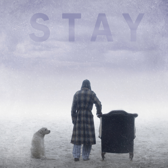 avatar for Stay