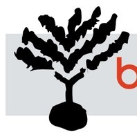 avatar for Burning Bush Creation