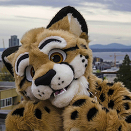 avatar for Cheetah Obscura