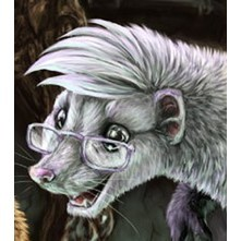 avatar for ferret