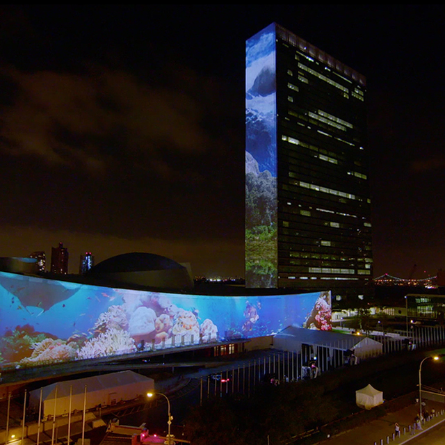 avatar for Racing Extinction