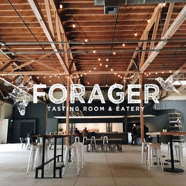 avatar for Forager Tasting Room & Eatery