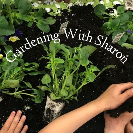 avatar for Gardening with Sharon