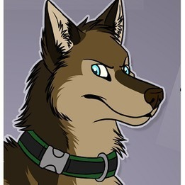 avatar for KindleWolf