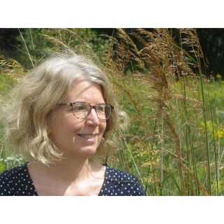 avatar for Diane Greening