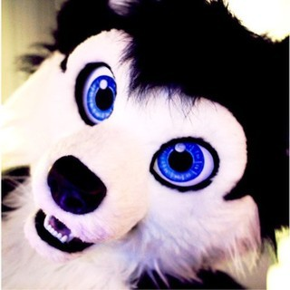 avatar for Sheppy