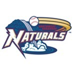 avatar for The Arkansas Naturals