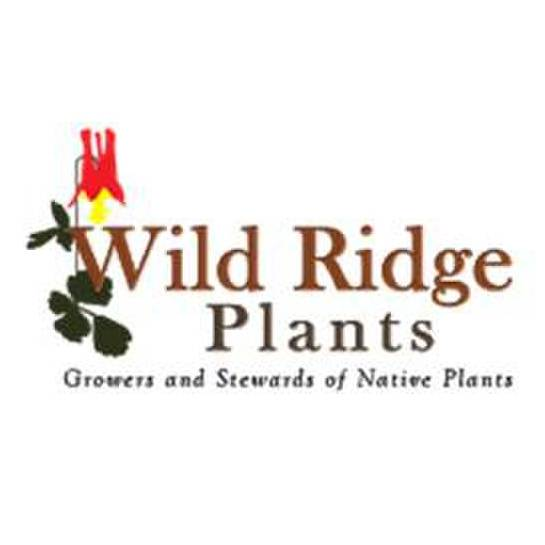 avatar for Wild Ridge Plants