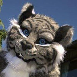 avatar for Grey Tiger Silverwings
