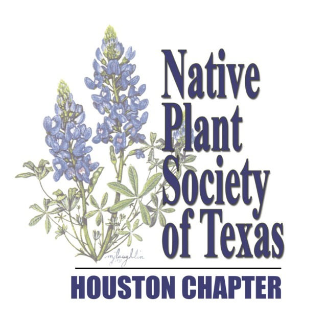 avatar for Native Plant Society of Texas - Houston Chapter