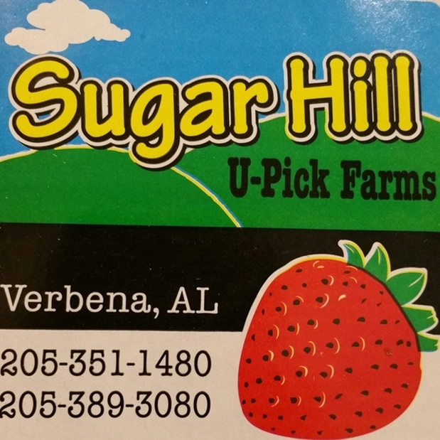 avatar for Sugar Hill U-pick Farms