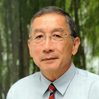 Professor Tikki Pangestu