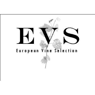 avatar for European Vine Selections
