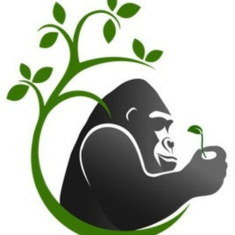 avatar for Silverback Learning Solutions