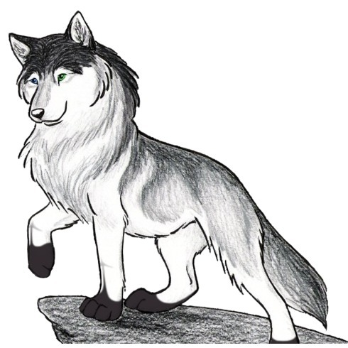avatar for Husky Crone