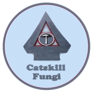 avatar for Catskill Fungi