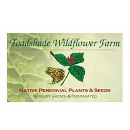 avatar for Toadshade Wildflower Farm