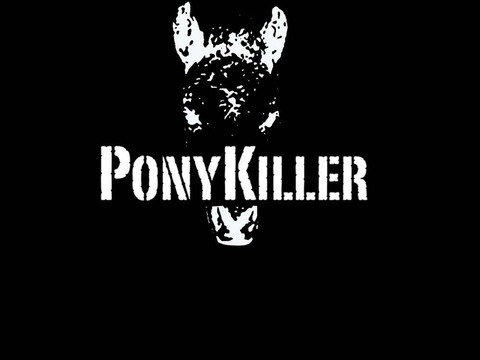 avatar for Ponykiller
