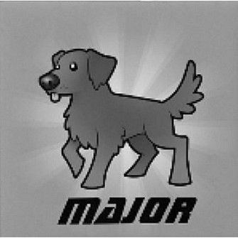 avatar for Major