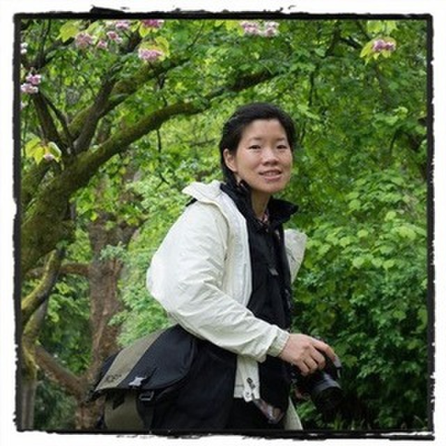 avatar for Amy Wong