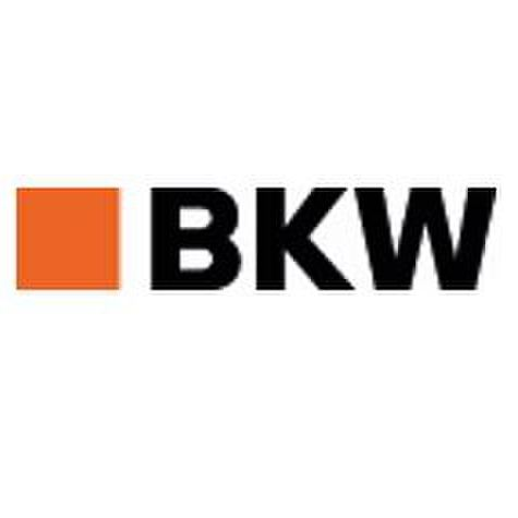 avatar for BKW
