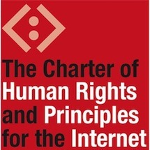 avatar for Internet Rights and Principles Coalition