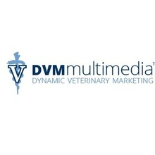 avatar for DVM Multimedia
